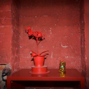 Red Corner - Detail